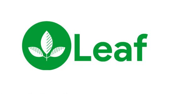 Leaf A89 Plus