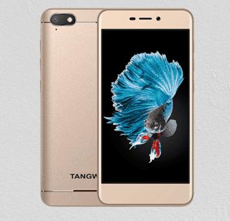 Tangwei L601