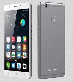 Tangwei W5