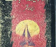 Tum-Ko-Shayad-Aitbar-Na-Aiy-by-Rehana-Qamar-pdf
