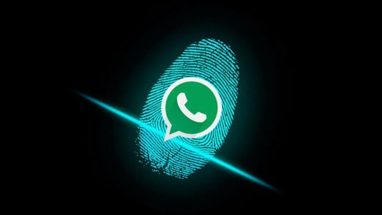 WhatsApp for Android has fingerprint protection. How to turn on