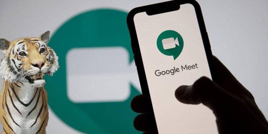 animal on Google Meet
